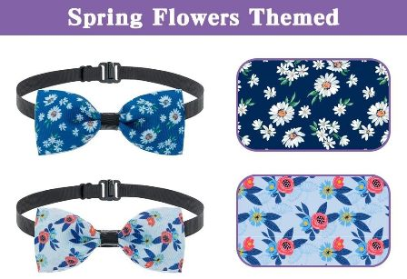 Bow Ties for Spring Time