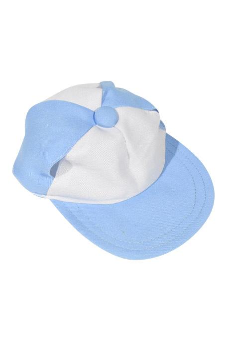 Blue and White Baseball Cap